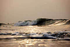Tempurungs-Küsten-Meereswogen Lizenzfreies Stockfoto