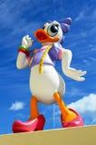 Stokrotki kaczka Obrazy Royalty Free