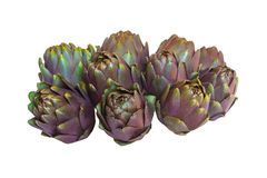 Ten artichokes on white background royalty free stock photography