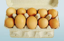 Ten brown eggs. Royalty Free Stock Photos