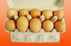 Ten brown eggs. Royalty Free Stock Image