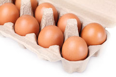 Ten brown eggs in a carton package Royalty Free Stock Image