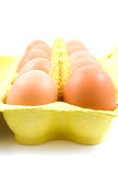 Ten chicken eggs in box Royalty Free Stock Photo