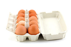 Ten chicken eggs in the box on white Stock Photography