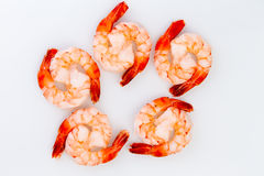 Ten Cooked Cocktail Tiger Shrimps Stock Image