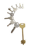 Ten different keys Stock Image
