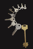 Ten different keys Royalty Free Stock Image