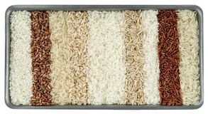 Ten different varieties of rice royalty free stock image