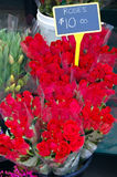 Ten dollar roses royalty free stock photography