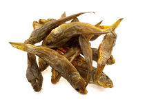 Ten dried sea fishes Stock Photo