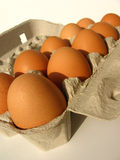 Ten eggs. Eggs in cardboard tray royalty free stock photography