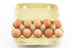 Ten eggs in the carton isolated on white Stock Images