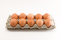 Ten Eggs in egg tray. Isolated on white background Stock Image