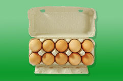 Ten eggs in the grey box. Royalty Free Stock Photo