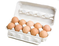 Ten eggs in white carton box Royalty Free Stock Photo