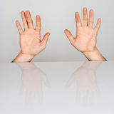 Ten finger. Two spread hands on a gray background royalty free stock photos