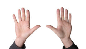 Ten fingers Stock Photography