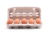 Ten fresh eggs in a carton package Stock Image