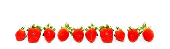 Ten fresh and natural red strawberries isolated on a seamless wide panorama frame format white background. Ten fresh and natural red strawberries of different stock photos