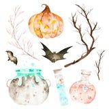 Ten Halloween set zawierać magiczny kocioł, napój miłosny butelkuje, nietoperze, gałąź i szalona bania, ilustracji