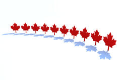 Ten maple leafs. Canadian states symbol 3d illustration Royalty Free Stock Photography