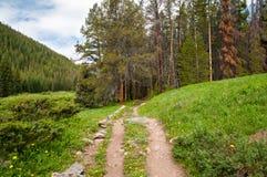 Ten Mile Trail Stock Photo