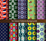 Ten patterns nature holiday backgrounds. Royalty Free Stock Images