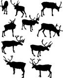 Ten reindeer silhouettes Royalty Free Stock Photography