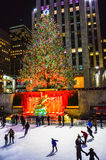 Ten roku drzewo 2014 Fotografia Stock