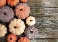 Ten rustic aged pumpkins different colors on a rustic wooden background. Ten Colorful aged pumpkins with star anise and cinnamon siicks all in horizontal form stock photography