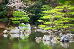 Ten smaller islands of the Mirror Pond Kyoko-chi lake are in a magnificent Japanese strolling garden. Kyoto, Japan. Rainy day Stock Photos
