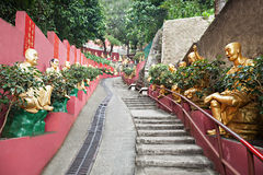 Ten Thousand Buddhas Monastery Stock Photos