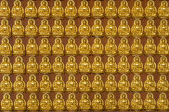 Ten thousand golden buddhas lined up along the wall Stock Image