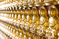 Ten Thousand Golden Buddhas Royalty Free Stock Photos