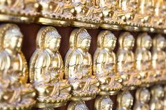 Ten Thousand Golden Buddhas Stock Images