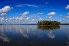 Ten Thousand Island. Landscape in everglades national park, Ten Thousand Island Royalty Free Stock Images