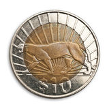 Ten Uruguayan pesos. Ten Uruguayan pesos coin, with cougar,  isolated, white background. Clipping path excludes the shadow Royalty Free Stock Photography