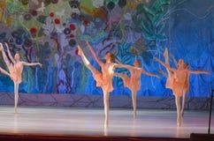 Ten wiecznie baletnicza bajka Zdjęcie Stock