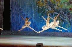 Ten wiecznie baletnicza bajka Fotografia Royalty Free