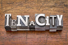 Tenacity word in  metal type Stock Photo