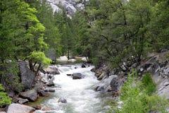 Tenaya Creek Royalty Free Stock Images