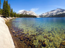 Tenaya Lake. Close-up view of the Tenaya Lake at the Tioga pass in Yosemite National Park Stock Image