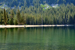 Tenaya Lake Stock Photography