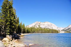 Tenaya Lake Royalty Free Stock Photos