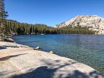 Tenaya Lake and Pine Trees. An amazing view can be seen here from Tenaya lake at Yosemite National Park Royalty Free Stock Photos
