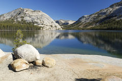 Tenaya Lake in Yosemite National Park Royalty Free Stock Photography