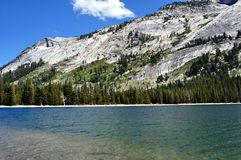 Tenaya Lake at Yosemite National Park Royalty Free Stock Image