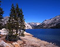 Tenaya Lake, Yosemite National Park, USA. Royalty Free Stock Photography