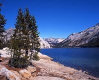 Tenaya Lake, Yosemite National Park, USA. Stock Photos