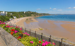 Tenby beach Wales uk in summer with beautiful bright pink and red flowers. Tenby north beach Wales uk in summer with tourists and visitors enjoying the sand blue Stock Images